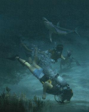 tropics slide show,scuba